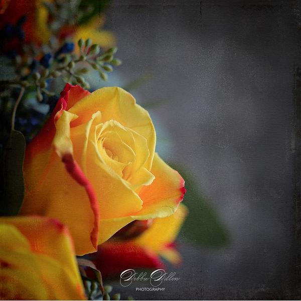 yellow rose moody wm.jpg