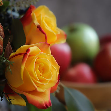 Yellow rose close up with apples.jpg