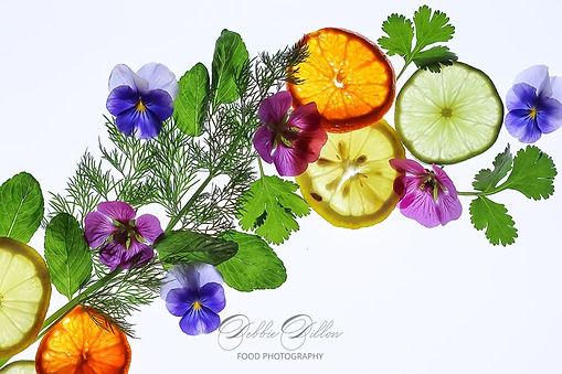 light box herbs citrus wm.jpg