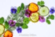 Light box herbs and citrus.jpg