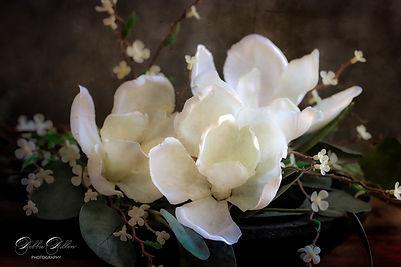 Magnolia Passion PS wm.jpg