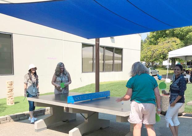 Concrete Ping Pong