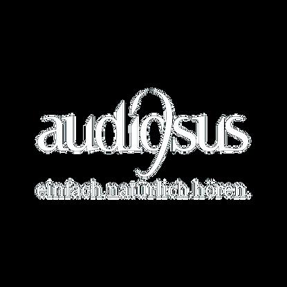 Audiosus_Lehmann_H%C3%B6rakustik_edited.