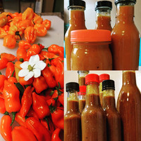 Making some home grown/home made hotsauce