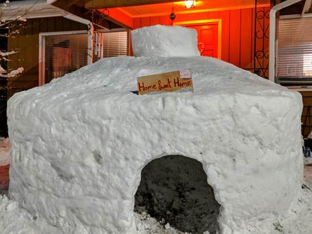 What to do after Seattle #snowmeggdon 2019.  Build a fort the size of a Fiat.