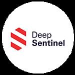 Deep Sentinel.png