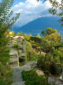 Paradiesischer Garten mit einheimischen Pflanzen und Tieren