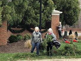 Salisbury entrances 1.jpg