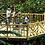 Thumbnail: Birding Capitals of Costa Rica