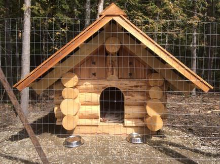 Custom log doghouse