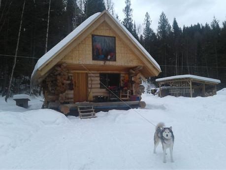Off grid cedar cabin in winter