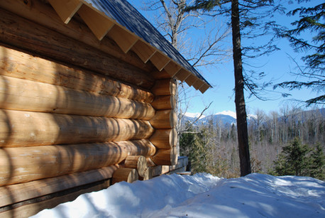 Log cabin with a view!