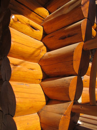 Round notch full scribe pine