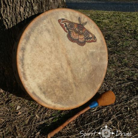 moth drum 2.jpg