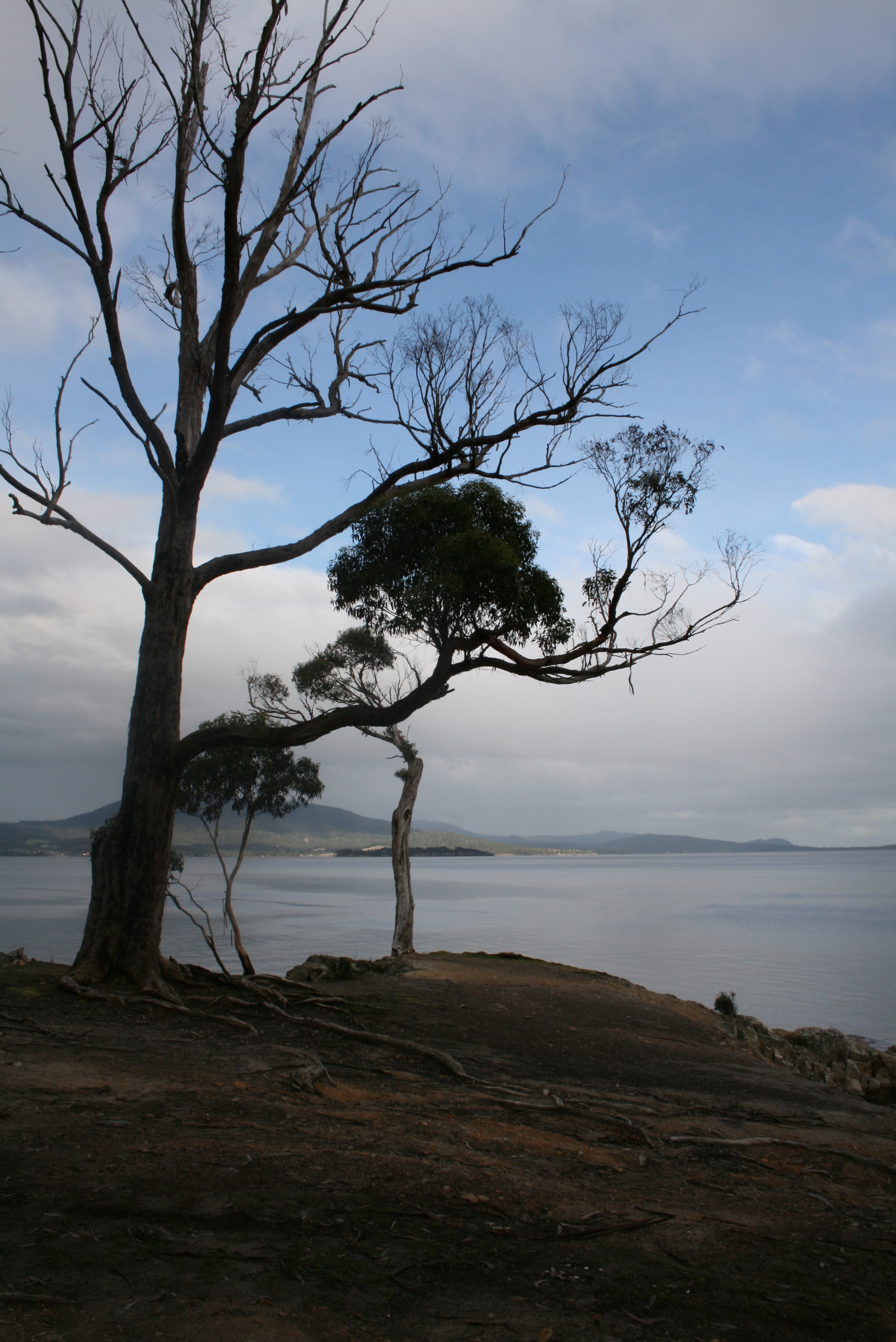 Travel shoot - Tasmania