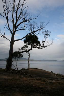 Travel shoot - Tasmania