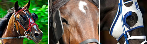 focus with blinders