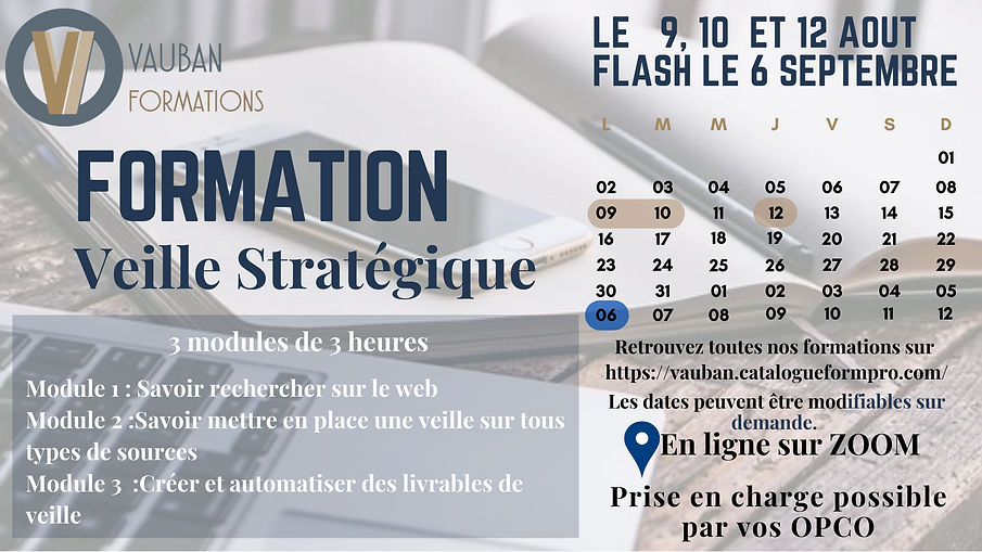 formation aout veille .png