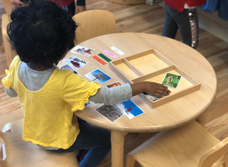 A Typical Day for a Child in the Montessori Classroom