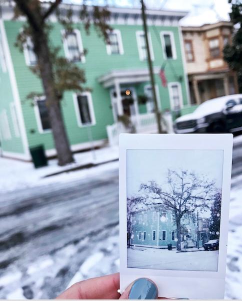 Savannah in the snow