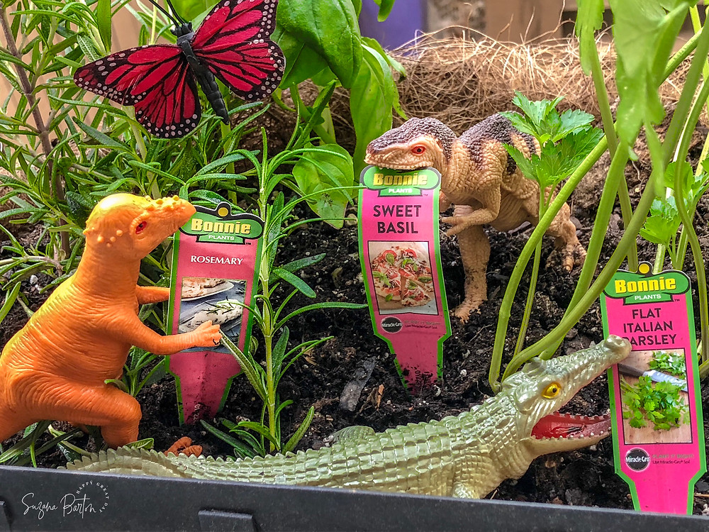 back porch herb garden with dinosaurs