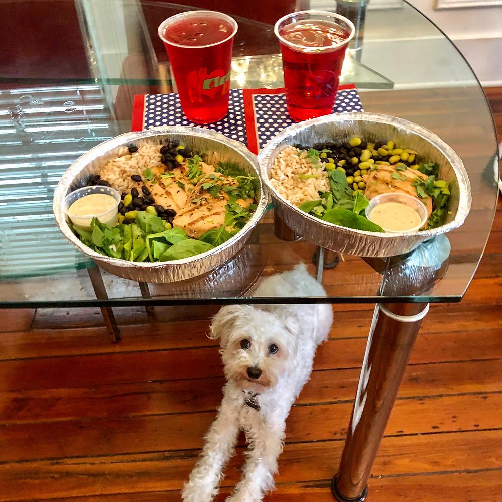 Dog staring at dinner