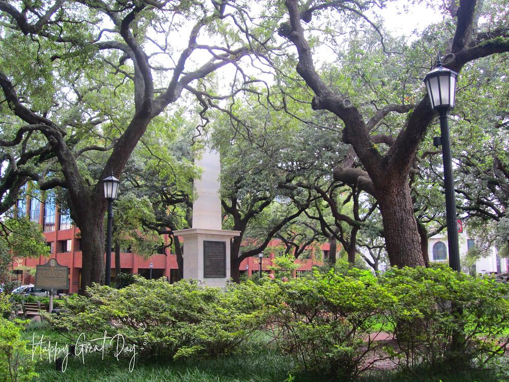 No moss in Savannah Johnson Square