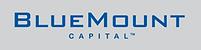 Bluemount_logo-1019471833.png