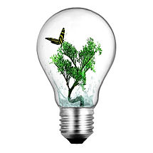 Lightbulb_with_bonsai_plant_and_butterfl