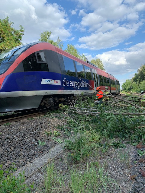 Euregiobahn kollidierte mit umgestürzten Bäumen.