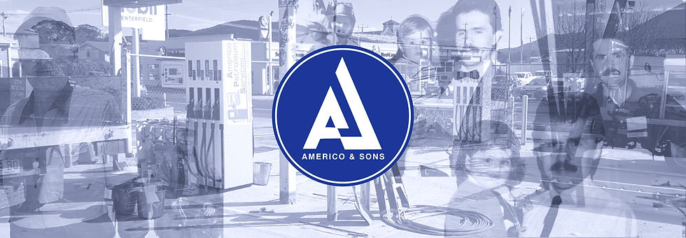 americo%20and%20sons%20banner_edited.jpg