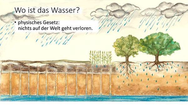 Bäume_und_Wasser_1.jpg