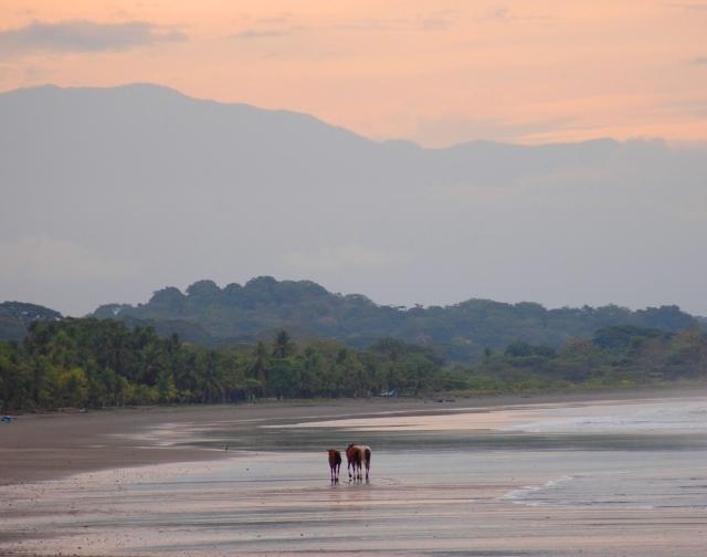 Costa-Rica-Beach-House 0106.jpg