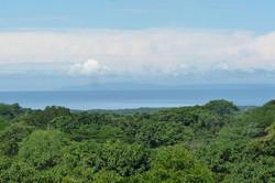 952 Tarcoles Costa Rica 126.jpg