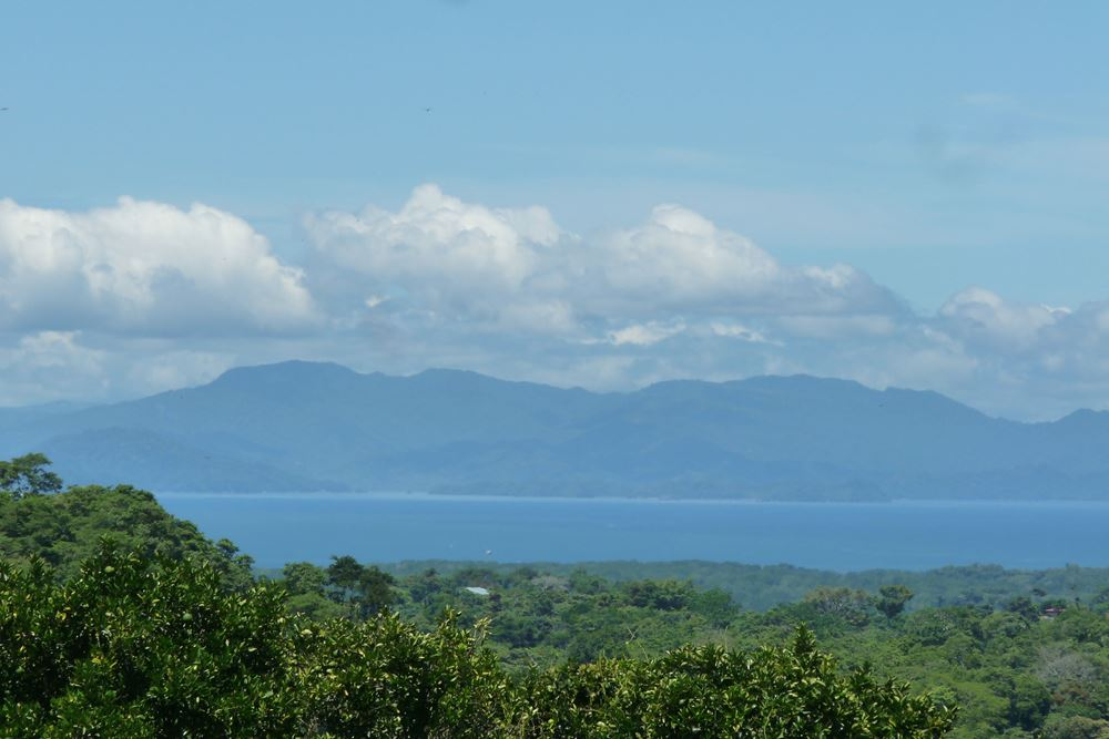 952 Tarcoles Costa Rica 128.jpg