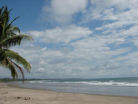 beach533.jpg