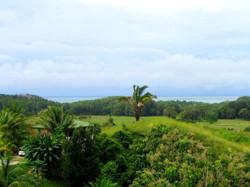 954-Costa-Rica-Real-Estate-Dominical 1055.JPG