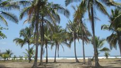 Playa Palma