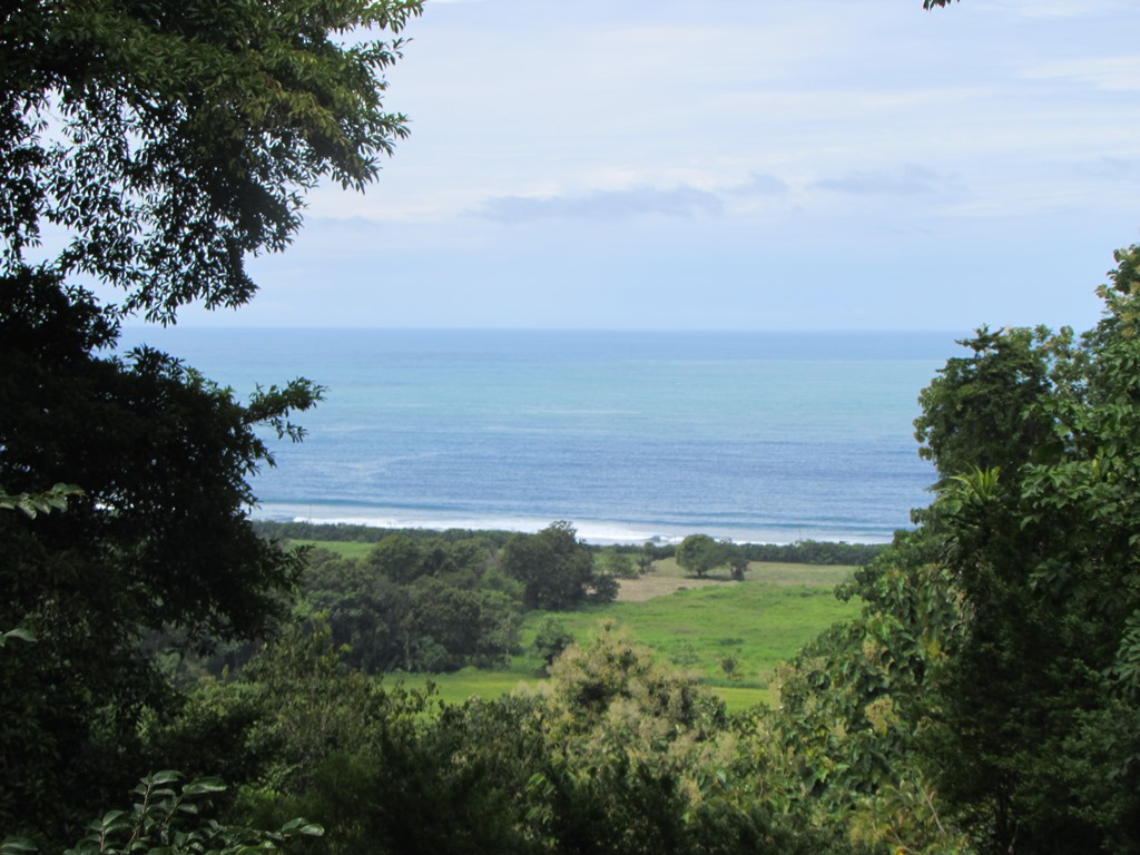 Hermosa View