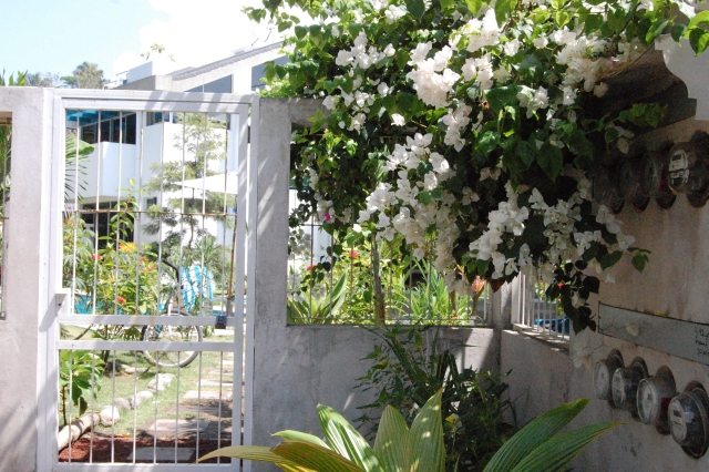 Costa-Rica-Beach-House 0115.JPG