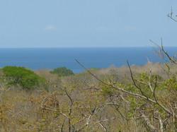 ocean-view-lot-guanacaste04.JPG