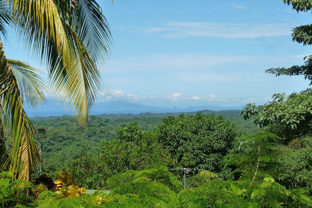 952 Tarcoles Costa Rica 125.jpg