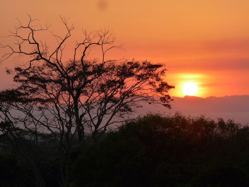 952 Tarcoles Costa Rica 165.jpg