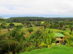 954-Costa-Rica-Real-Estate-Dominical 1074.JPG