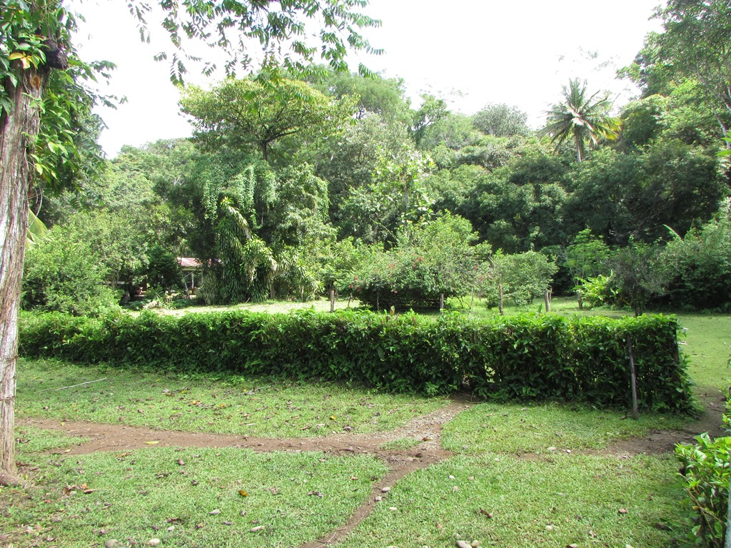 945 Dominical Ocean View083.JPG