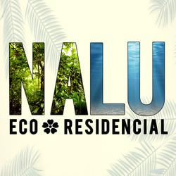 NALU-fb-icon-spanish.jpg
