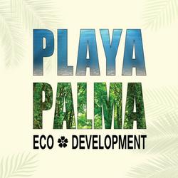 palm leaf .png