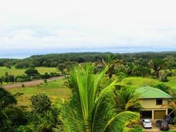 954-Costa-Rica-Real-Estate-Dominical 1077.JPG