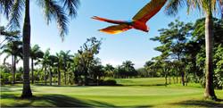 VillaLosCaraos-golfcourse2.jpg