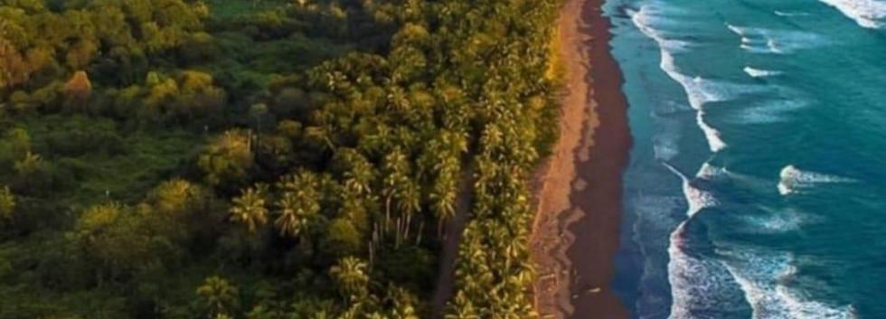 palo seco aerial.jpg
